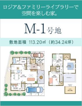 PLAN M-1